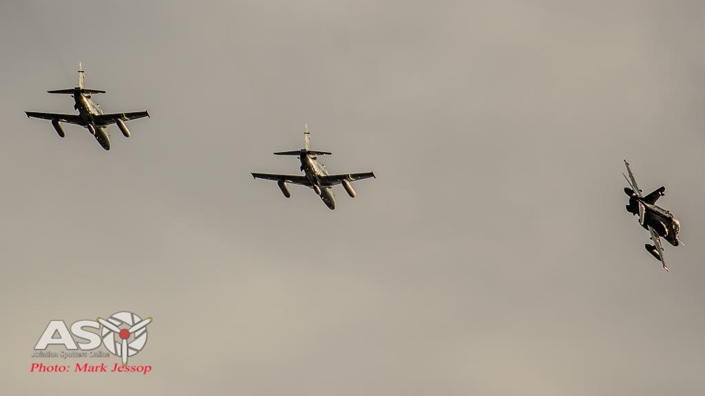 Hawks Queenstown arrive-25