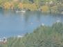 Queenstown hawk flyover