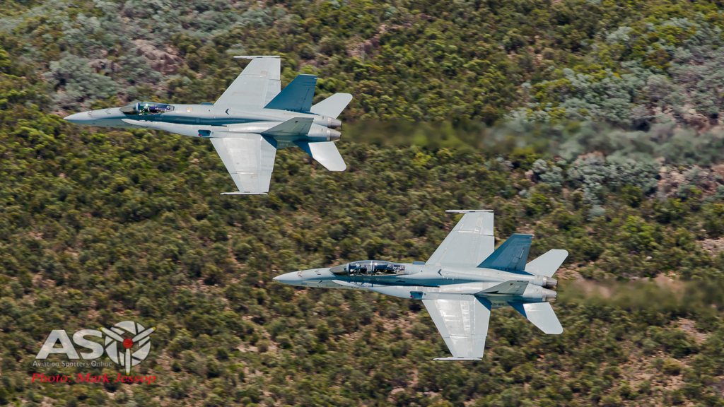Aus Day Hornets-1