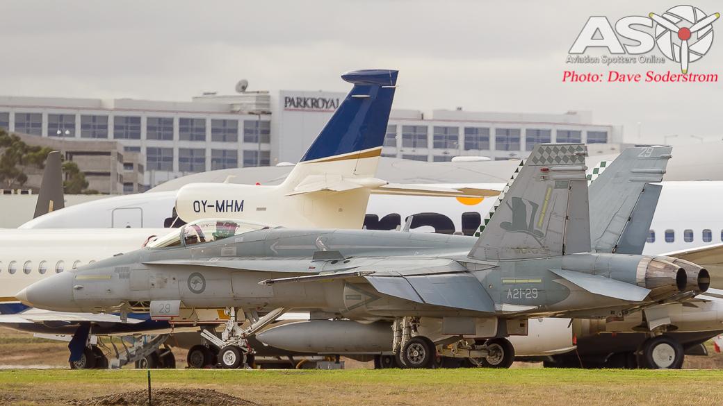 A21-29 RAAF Hornet AS0 4 (1 of 1)