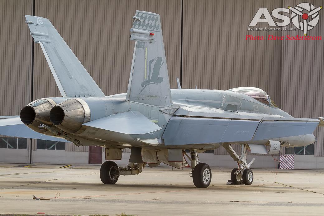 A21-29 RAAF Hornet ASO3 (1 of 1)