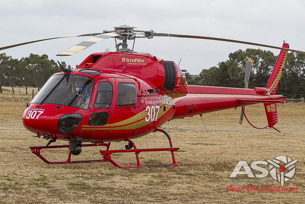 Firebird 307