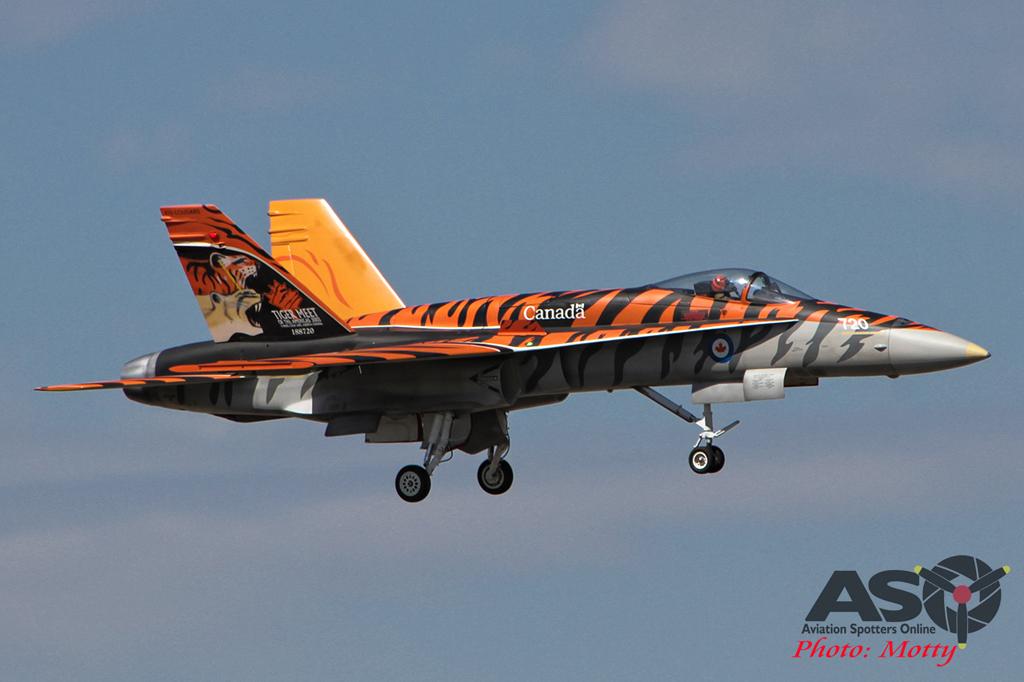 Mottys RC CF-18 1001 Gunnedah 2015