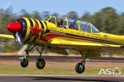 Mottys-HVA2019-PBA-Yak-52-VH-MHH-06294-DTLR-1-001-ASO