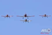 Mottys-HVA2019-RAAF-Trainers-Winjeel-CT-4-VH-WJE-VH-CTK-VH-CTV-VH-CTQ-03647-DTLR-1-001-ASO