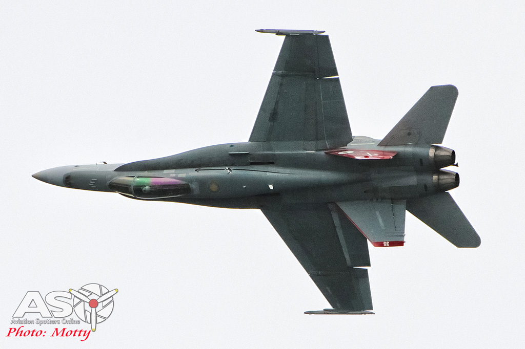 Mottys Nobbys Hornet Display 2015 ASO 0080