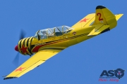 Mottys-Rathmines-2017-Paul-Bennet-Airshows-Yak-52-VH-MHH-4647-ASO