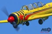 Mottys-Rathmines-2017-Paul-Bennet-Airshows-Yak-52-VH-MHH-4828-ASO