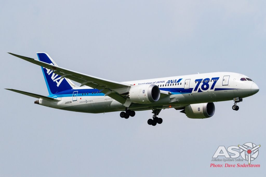 JA803A ANA Boeing 787-8 ASO (1 of 1)