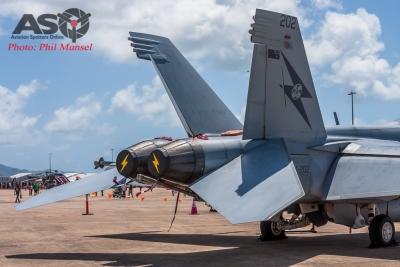 RAAF FA-18F Super Hornet (41)