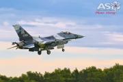 Mottys-Diamond-Shield-Aggressor-F16-305_2017_03_22_1995-ASO