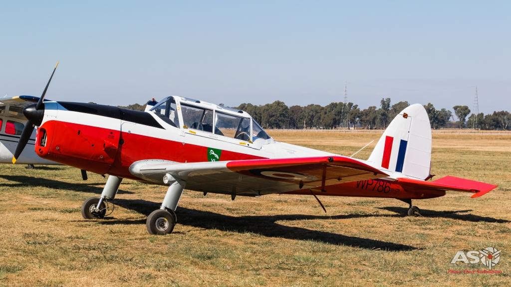 Wangaratta-Flyin-2021-75-1-of-1