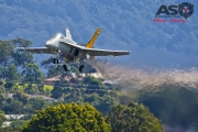 Mottys-ADF-RAAF-Hornet-WOI-2018-02471-001-ASO
