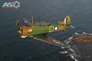 Mottys Paul Bennet Airshows Wirraway VH-WWY A2A 0360-ASO