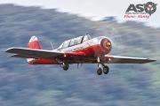 Wings Over Illawarra 2016 Russian Roolettes-215
