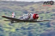 Wings Over Illawarra 2016 Russian Roolettes-217