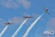 Wings Over Illawarra 2016 Russian Roolettes-239