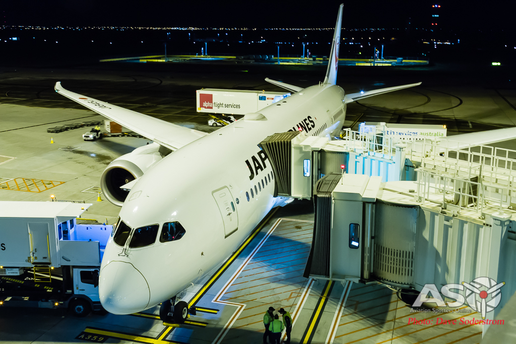 Japan Airlines comes to Melbourne Airport.