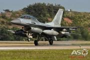 Mottys 111FS ROKAF KF-16 Kunsan 2015 0570
