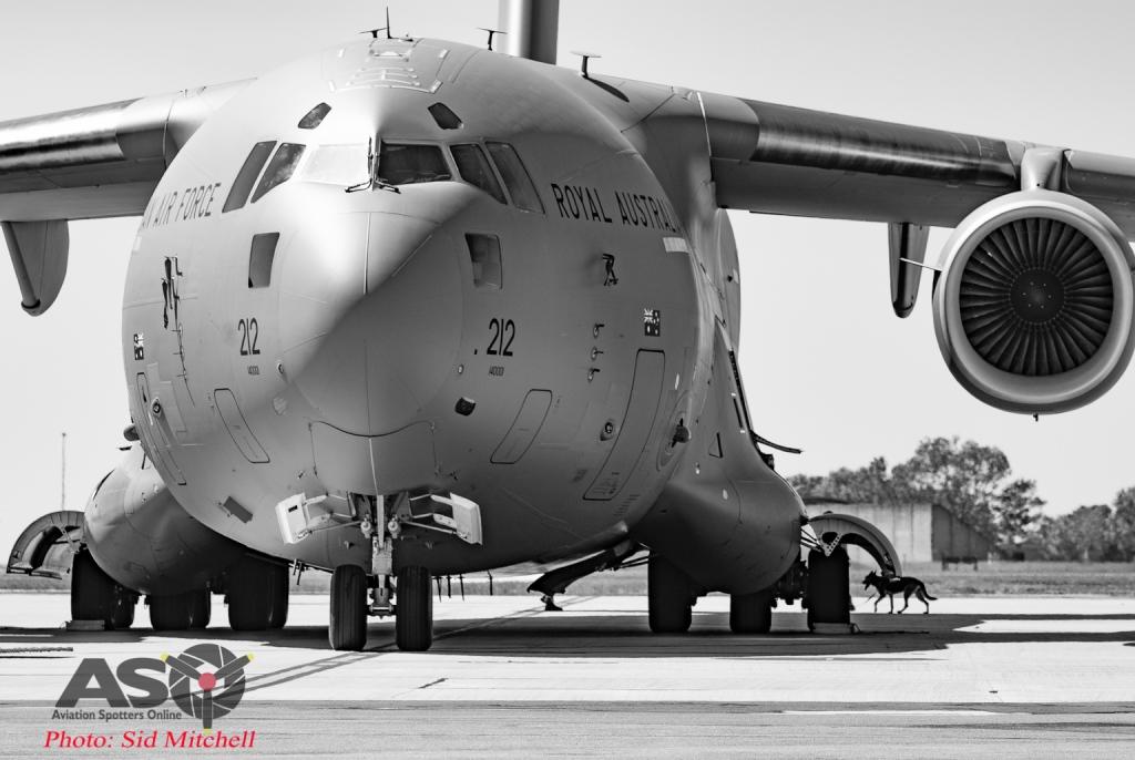 Sid - RAAF C-17 Globemaster