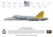 RAAF 2OCU Lithograph 2017 75th Anniversary Tail.