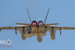 F/A-18A Hornet with some good underside ecto.