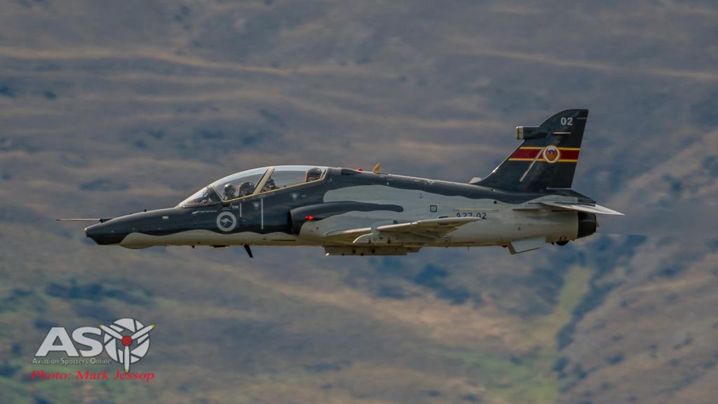 Watbirds over Wanaka-17