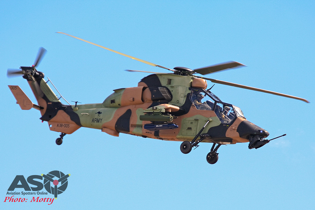 Mottys-Avalon-2007-Tiger-0947-LR-DTLR-1-001-ASO