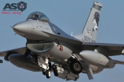 Mottys Kunsan TSP 114FW ANG Lobos F-16 0010
