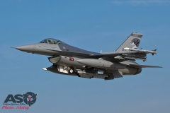 Mottys Kunsan TSP 114FW ANG Lobos F-16 0100