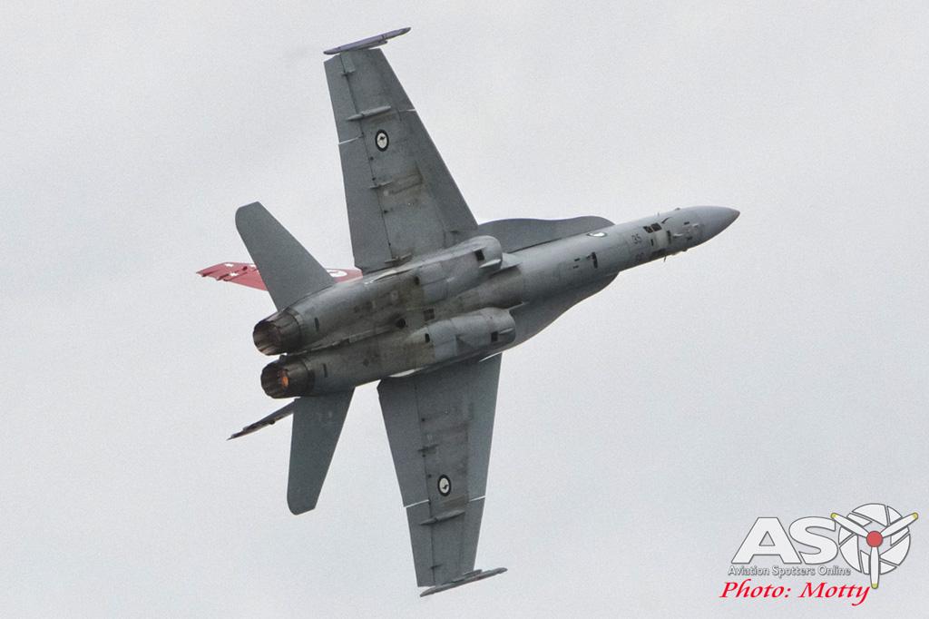 Mottys Nobbys Hornet Display 2015 ASO 0060