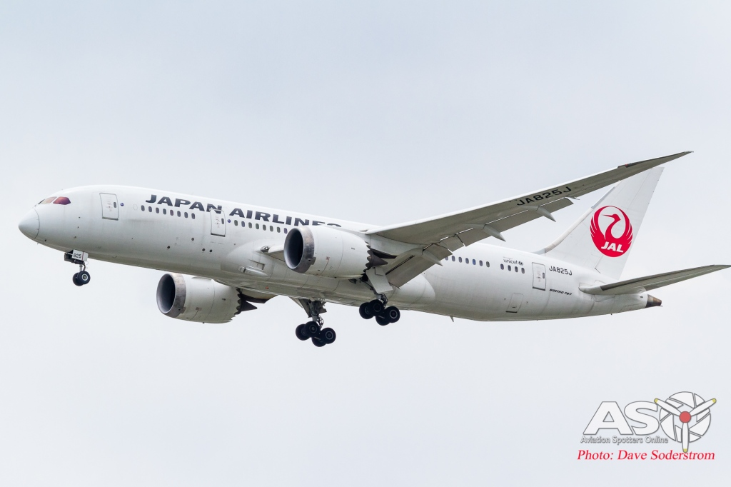 JA825J JAL Boeing 787-8 ASO (1 of 1)