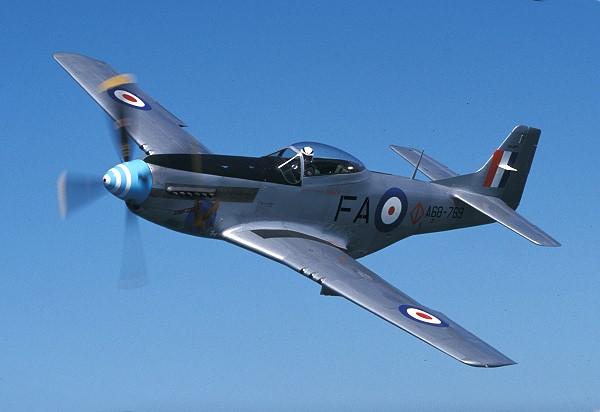 Rare Mustang flight Auction !!