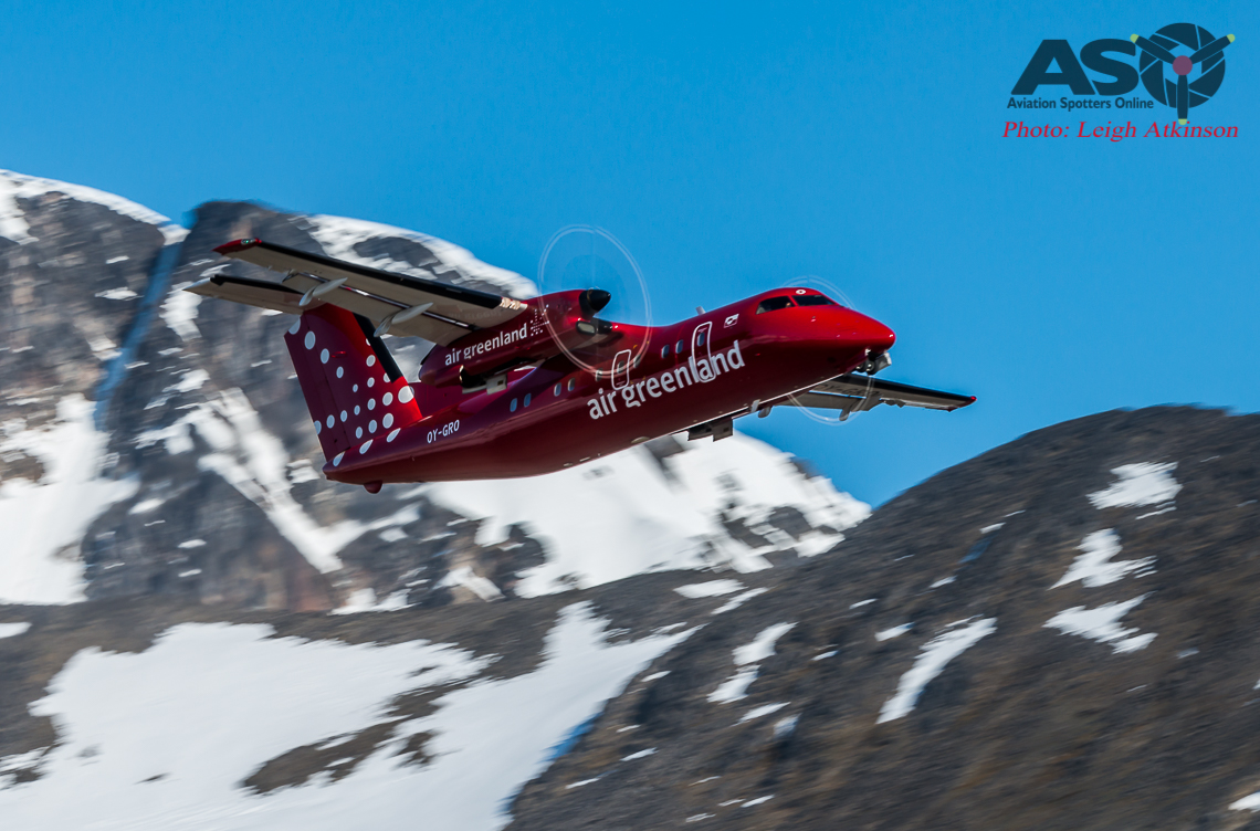 A Day of Spotting in Greenland