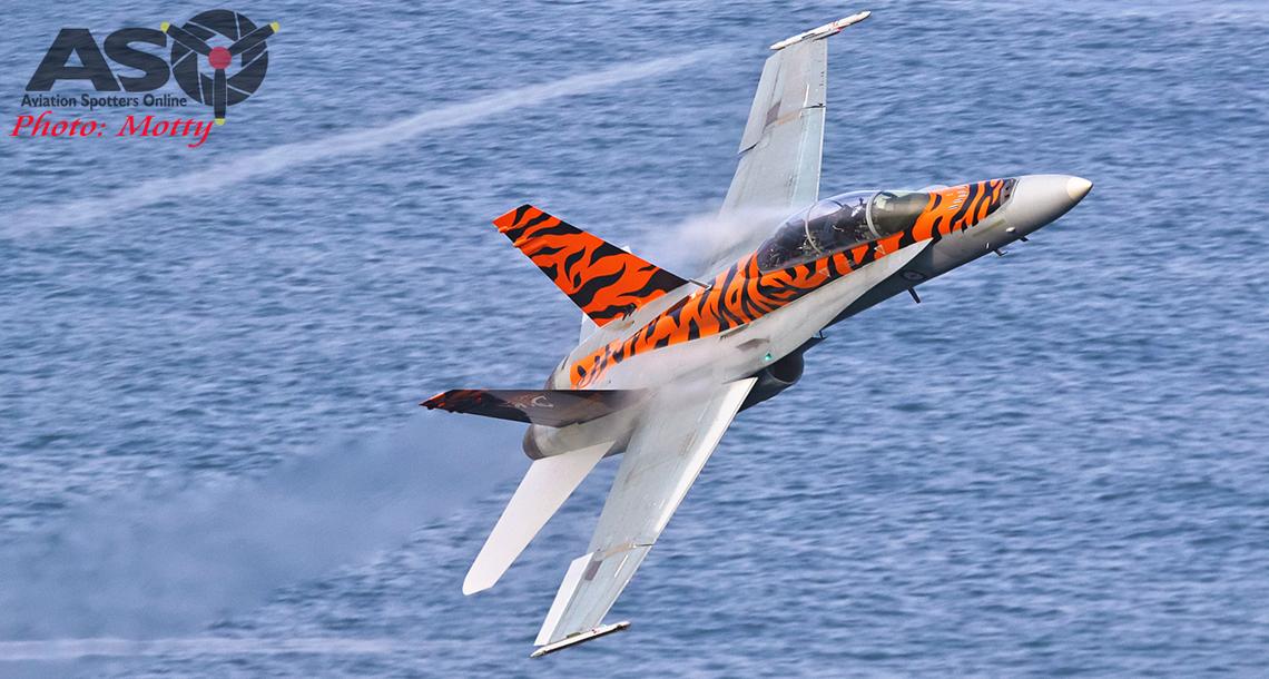 2OCU's 2019 Special Hornet Scheme